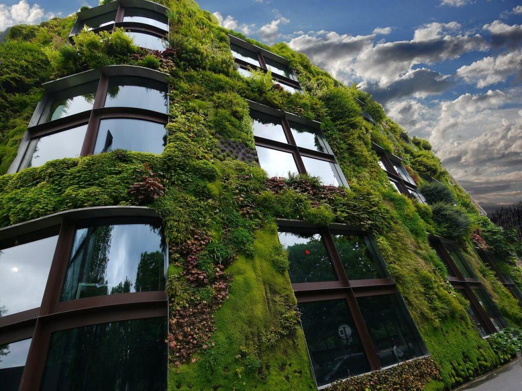Creation Mur Vegetal Exterieur mur végétal pour une maison écologique - home-ecolo